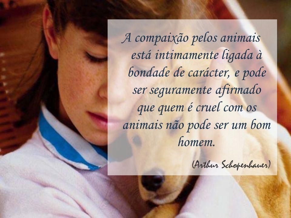 A compaixão pelos animais está intimamente ligada à bondade de carácter, e pode ser seguramente afirmado que quem é cruel com os animais não pode ser um bom homem.