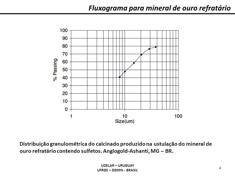 Fluxograma para mineral de ouro refratário UDELAR – URUGUAY UFRGS – DEMIN - BRASIL 4 Distribuição granulométrica do calcinado produzido na ustulação do mineral de ouro refratário contendo sulfetos.