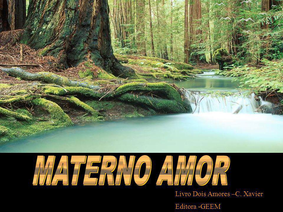 Livro Dois Amores –C. Xavier Editora -GEEM