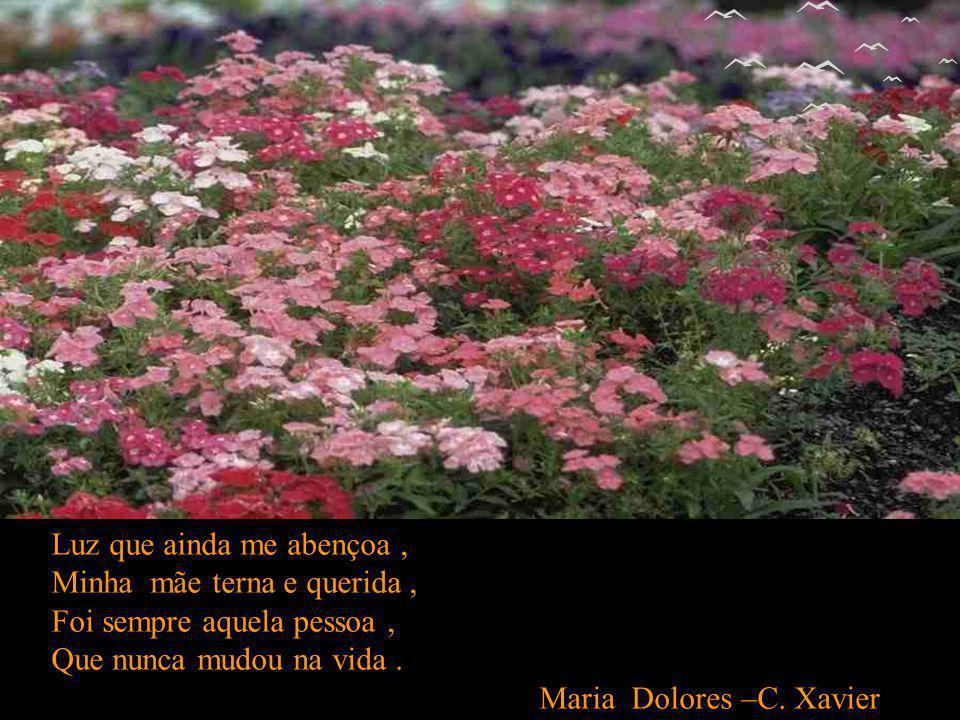 Mãe no mundo,onde estiver, Como for ou com quem for, É amor que se faz mulher, Mulher que se torna amor. Mariana Luz –C. Xavier