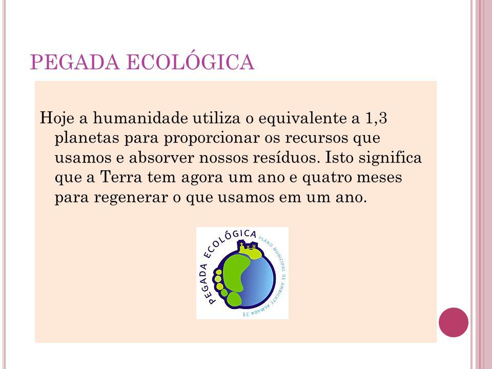 PEGADA ECOLÓGICA Hoje a humanidade utiliza o equivalente a 1,3 planetas para proporcionar os recursos que usamos e absorver nossos resíduos. Isto sign