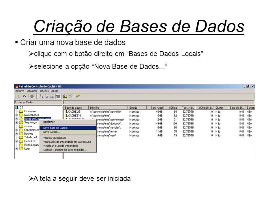  Criar uma nova base de dados  clique com o botão direito em Bases de Dados Locais  selecione a opção Nova Base de Dados...  A tela a seguir deve ser iniciada
