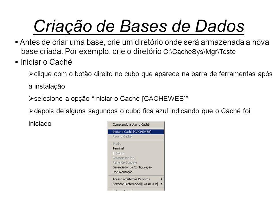 Criação de Bases de Dados  Antes de criar uma base, crie um diretório onde será armazenada a nova base criada. Por exemplo, crie o diretório C:\Cache