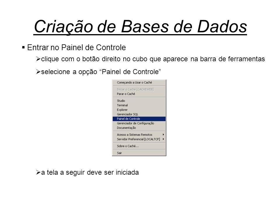 Criação de Bases de Dados  Entrar no Painel de Controle  clique com o botão direito no cubo que aparece na barra de ferramentas  selecione a opção Painel de Controle  a tela a seguir deve ser iniciada