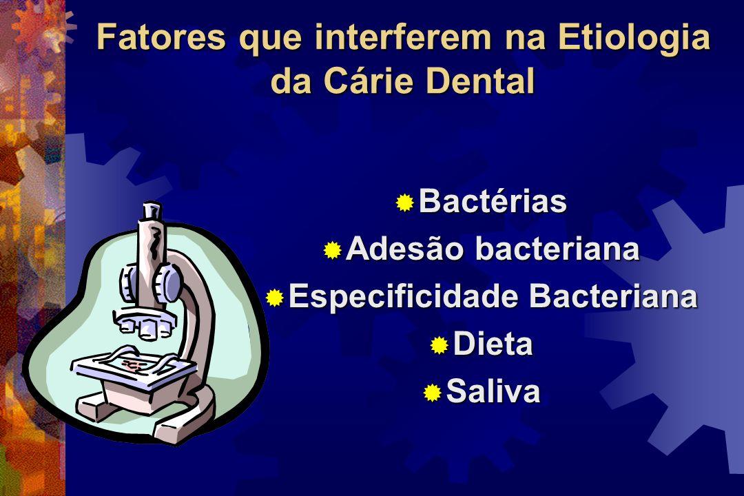 Ultra-estrutural Microscópica Clinicamente visível Cavitação Perda total Perda mineral Tempo