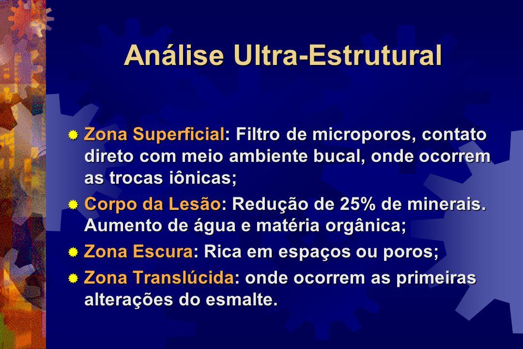Análise Ultra-Estrutural  Zona Superficial: Filtro de microporos, contato direto com meio ambiente bucal, onde ocorrem as trocas iônicas;  Corpo da Lesão: Redução de 25% de minerais.