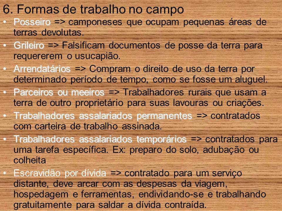 6. Formas de trabalho no campo PosseiroPosseiro => camponeses que ocupam pequenas áreas de terras devolutas. GrileiroGrileiro => Falsificam documentos