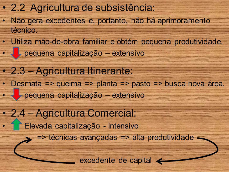 2.2 Agricultura de subsistência: Não gera excedentes e, portanto, não há aprimoramento técnico. Utiliza mão-de-obra familiar e obtém pequena produtivi