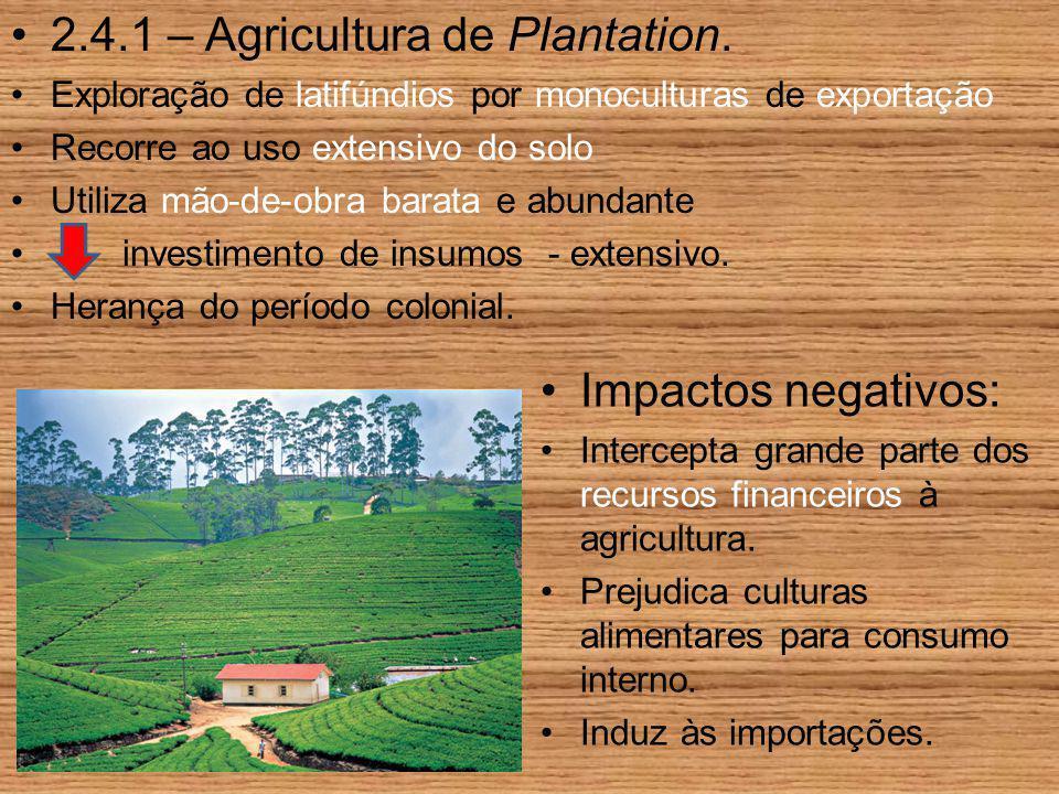 2.4.1 – Agricultura de Plantation. Exploração de latifúndios por monoculturas de exportação Recorre ao uso extensivo do solo Utiliza mão-de-obra barat