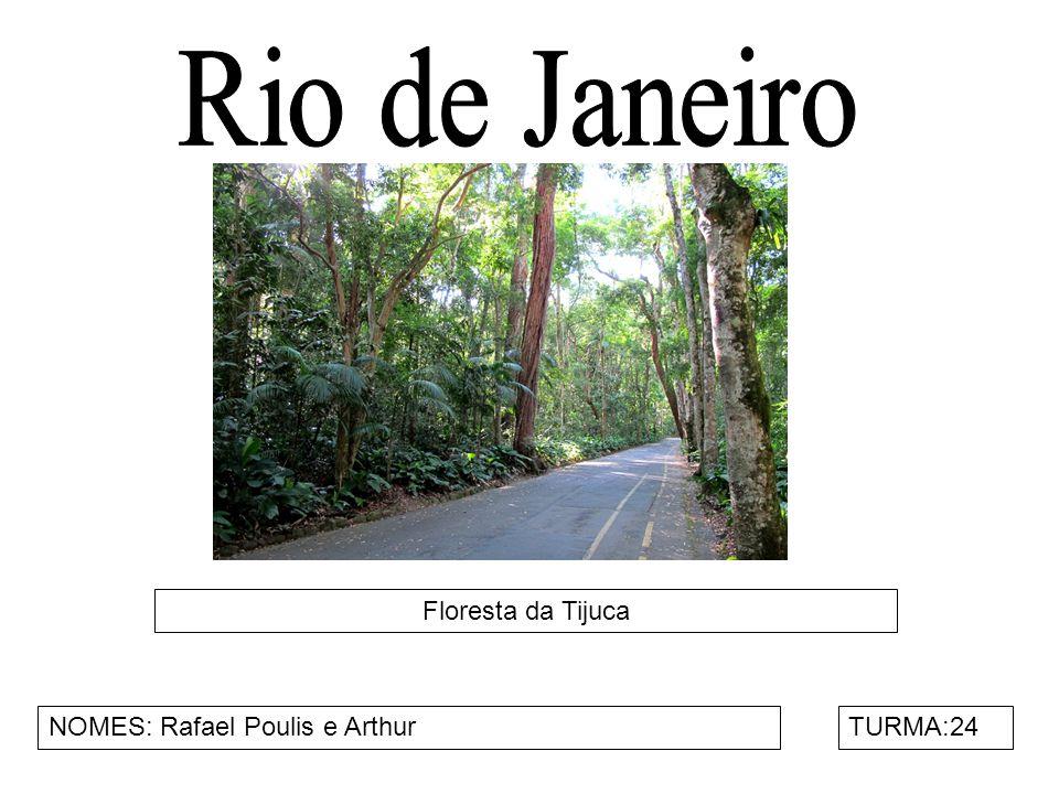 Floresta da Tijuca NOMES: Rafael Poulis e ArthurTURMA:24