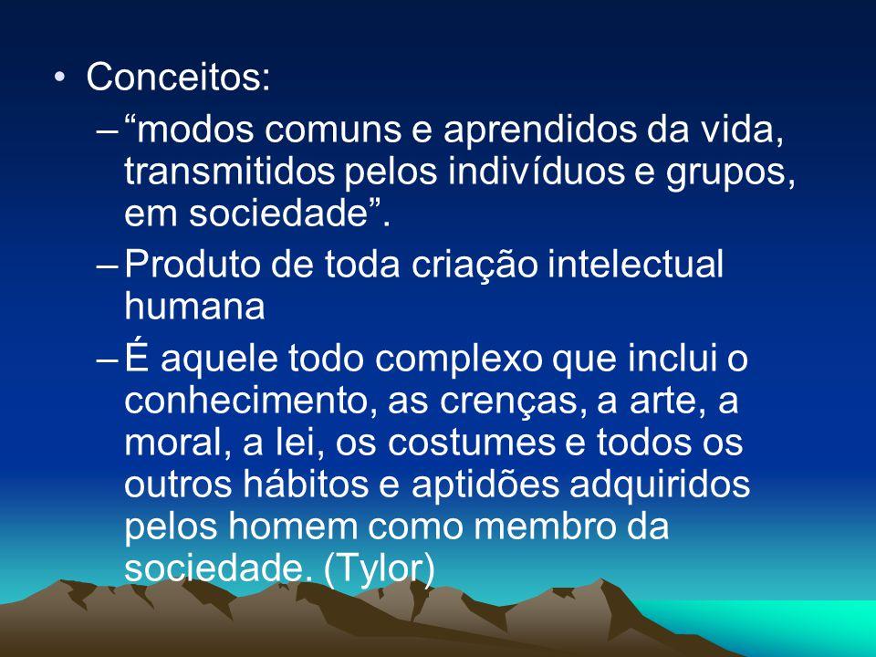 """Conceitos: –""""modos comuns e aprendidos da vida, transmitidos pelos indivíduos e grupos, em sociedade"""". –Produto de toda criação intelectual humana –É"""