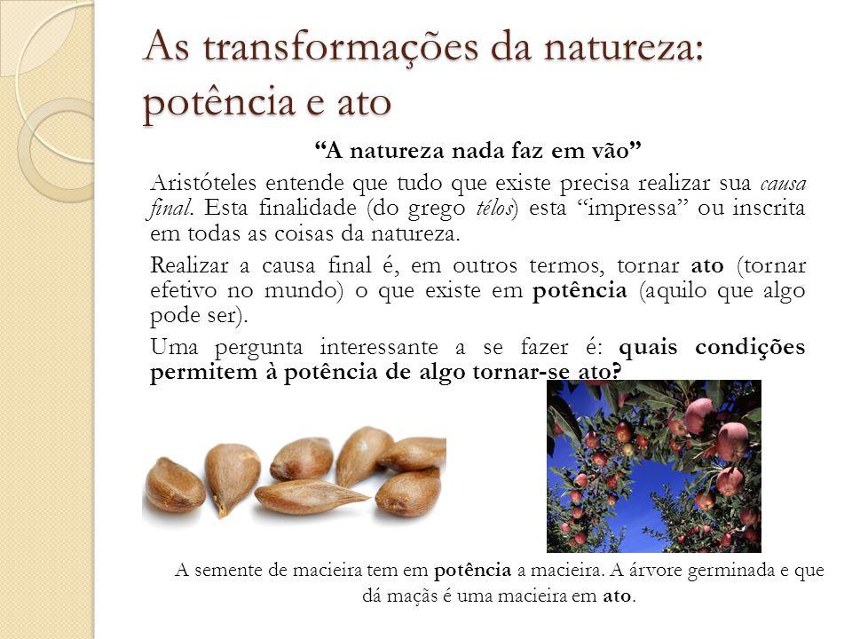 As transformações da natureza: potência e ato A natureza nada faz em vão Aristóteles entende que tudo que existe precisa realizar sua causa final.