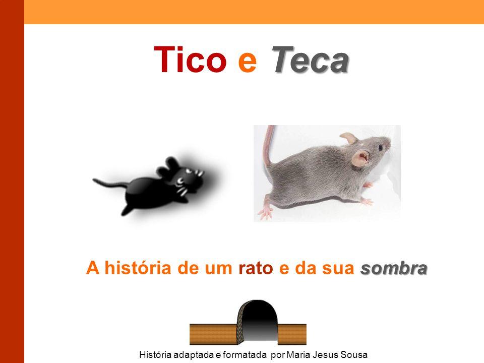 Teca Tico e Teca sombra A história de um rato e da sua sombra História adaptada e formatada por Maria Jesus Sousa