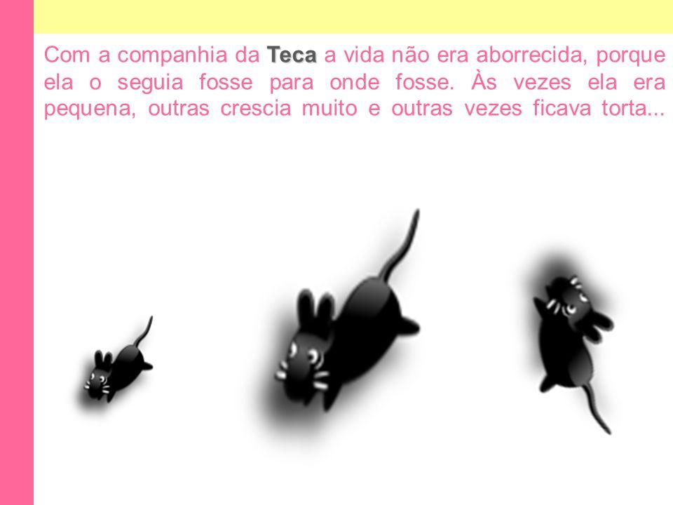 Teca Com a companhia da Teca a vida não era aborrecida, porque ela o seguia fosse para onde fosse.