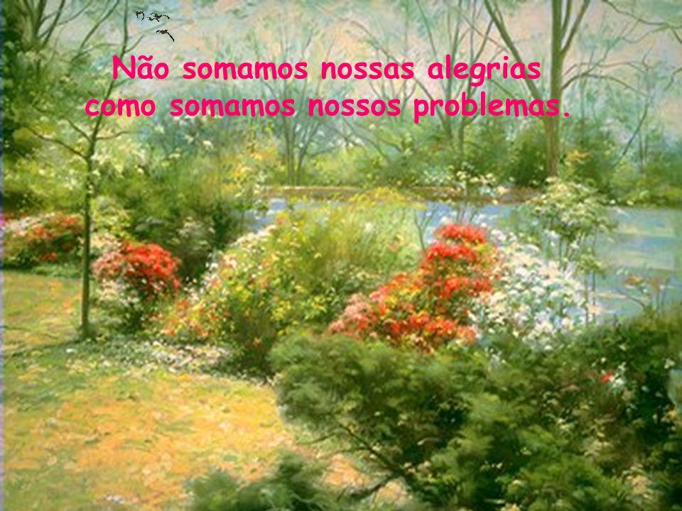 Não somamos nossas alegrias como somamos nossos problemas.