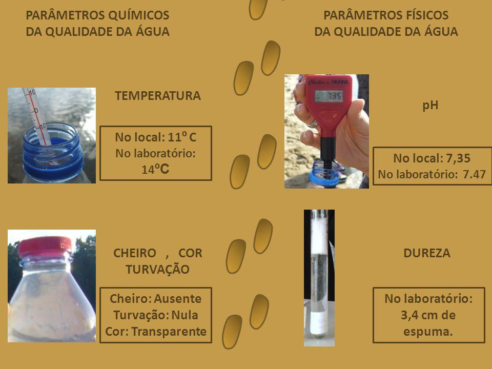 No local: 11 º C No laboratório: 14 ºC TEMPERATURA No local: 7,35 No laboratório: 7.47 pH Cheiro: Ausente Turvação: Nula Cor: Transparente CHEIRO, COR