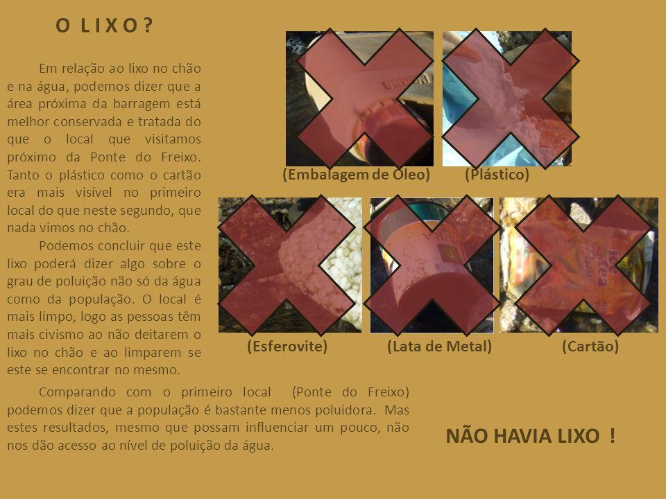 O L I X O ? (Esferovite)(Lata de Metal)(Cartão) (Plástico)(Embalagem de Óleo) Em relação ao lixo no chão e na água, podemos dizer que a área próxima d