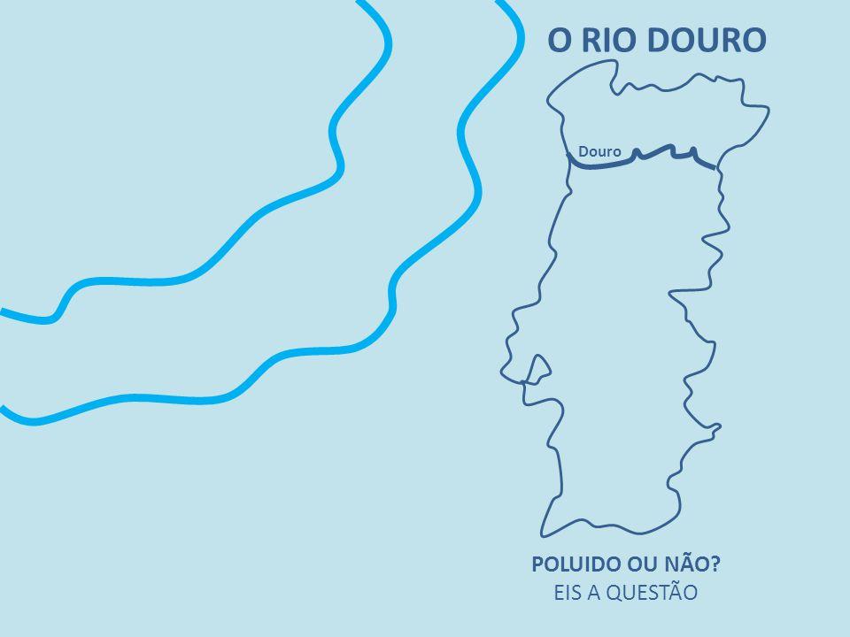 O RIO DOURO POLUIDO OU NÃO? EIS A QUESTÃO Douro