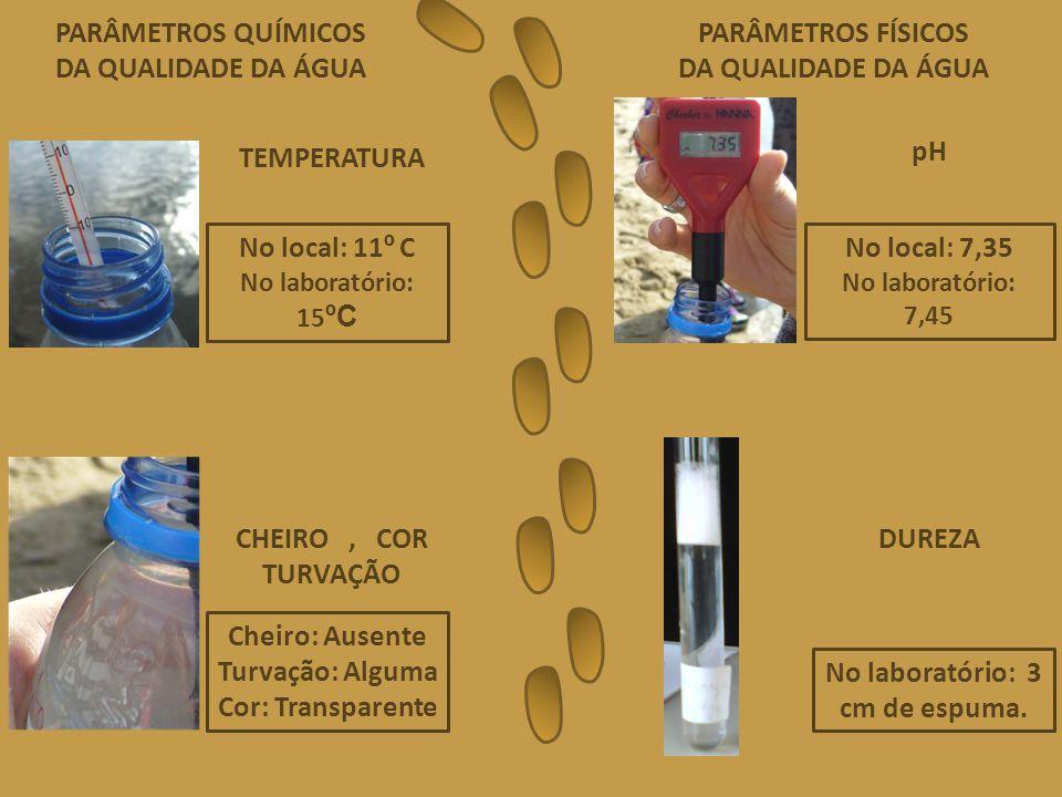 PARÂMETROS QUÍMICOS DA QUALIDADE DA ÁGUA PARÂMETROS FÍSICOS DA QUALIDADE DA ÁGUA No local: 11 º C No laboratório: 15 ºC TEMPERATURA No local: 7,35 No