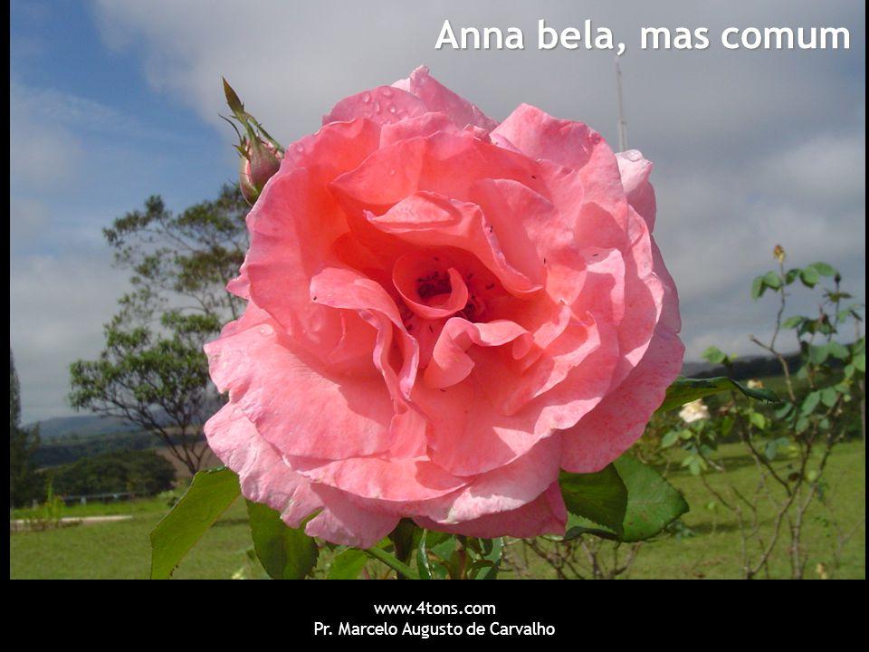www.4tons.com Pr. Marcelo Augusto de Carvalho Anna bela, mas comum