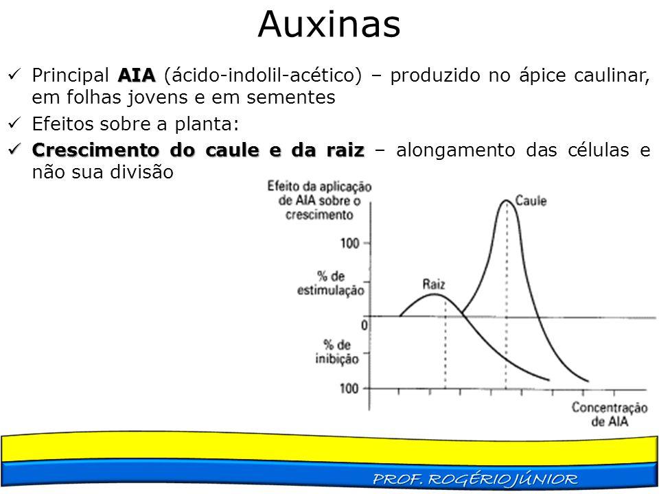 Auxinas AIA Principal AIA (ácido-indolil-acético) – produzido no ápice caulinar, em folhas jovens e em sementes Efeitos sobre a planta: Crescimento do