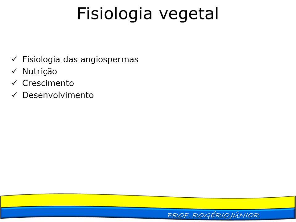 Fisiologia das angiospermas Nutrição Crescimento Desenvolvimento