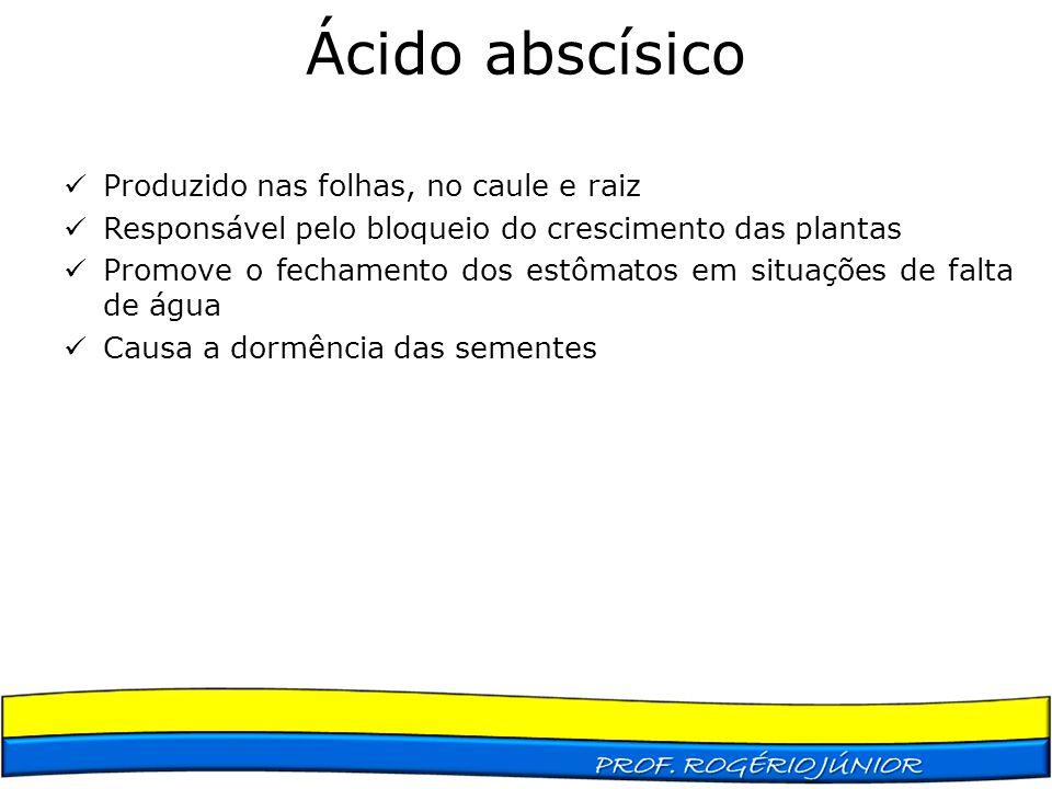 Ácido abscísico Produzido nas folhas, no caule e raiz Responsável pelo bloqueio do crescimento das plantas Promove o fechamento dos estômatos em situa