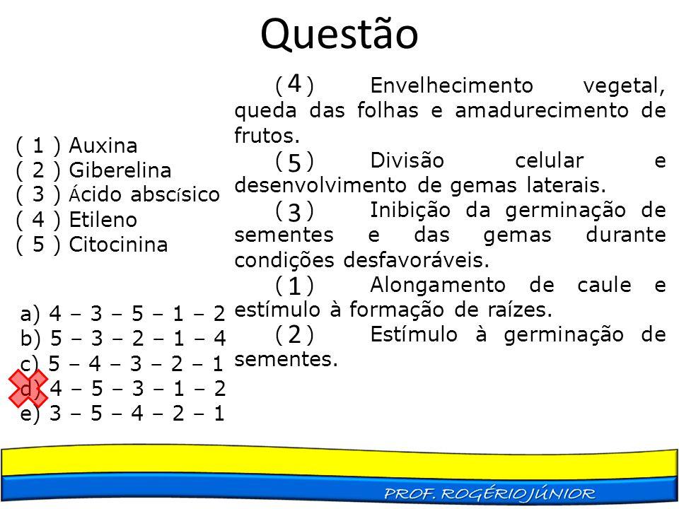 Questão ( 1 ) Auxina ( 2 ) Giberelina ( 3 ) Á cido absc í sico ( 4 ) Etileno ( 5 ) Citocinina ( )Envelhecimento vegetal, queda das folhas e amadurecim