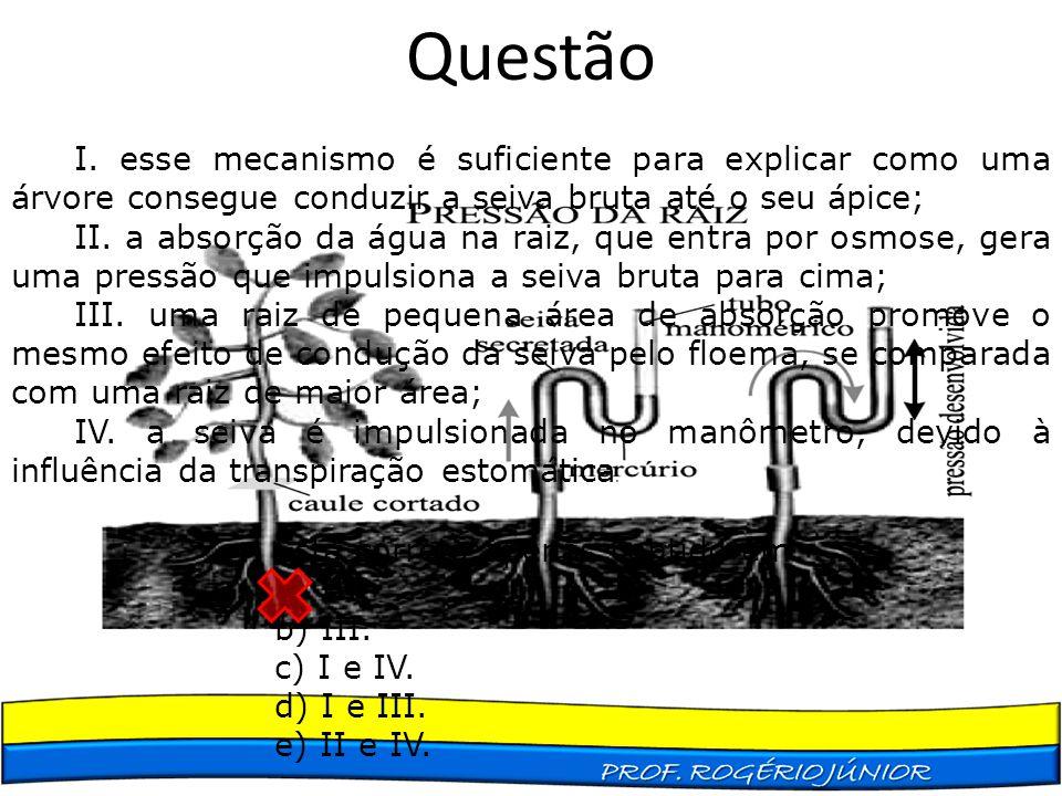 Questão I. esse mecanismo é suficiente para explicar como uma árvore consegue conduzir a seiva bruta até o seu ápice; II. a absorção da água na raiz,