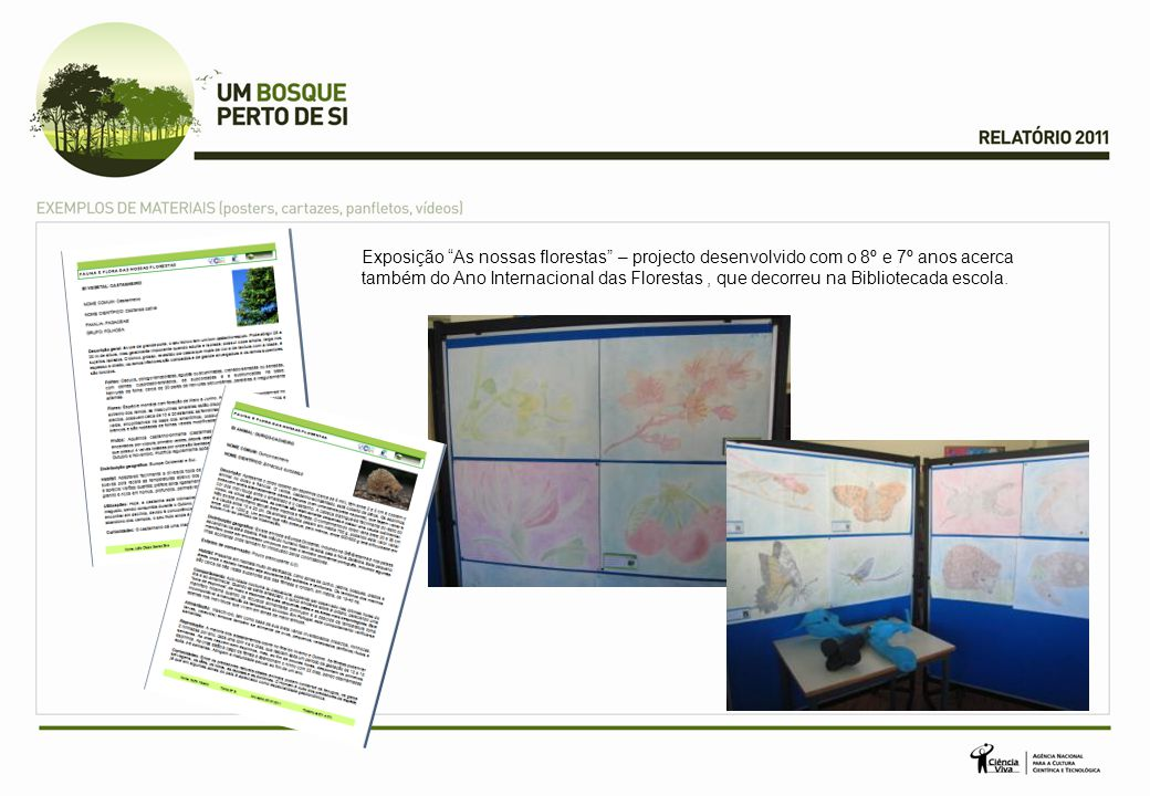 Exposição As nossas florestas – projecto desenvolvido com o 8º e 7º anos acerca também do Ano Internacional das Florestas, que decorreu na Bibliotecada escola.