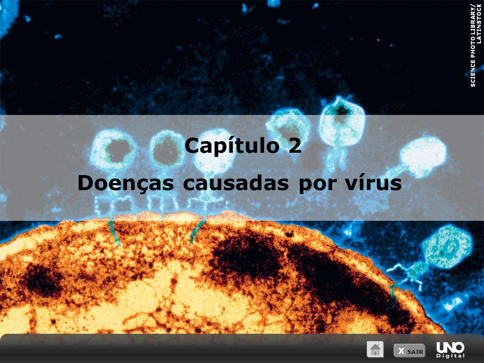 X SAIR SCIENCE PHOTO LIBRARY/ LATINSTOCK Capítulo 2 Doenças causadas por vírus