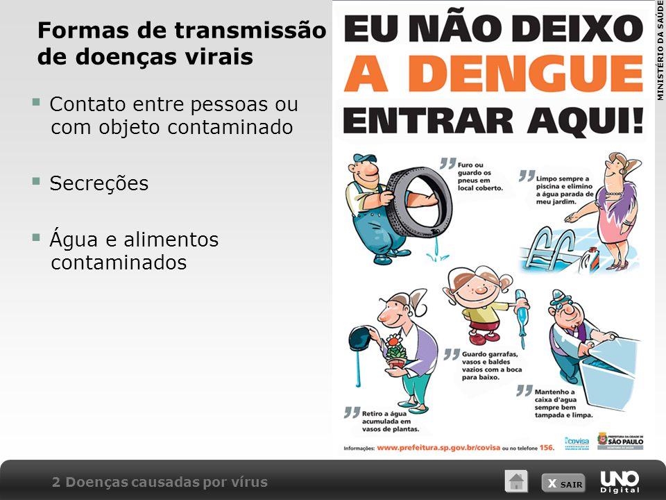 X SAIR Formas de transmissão de doenças virais  Contato entre pessoas ou com objeto contaminado  Secreções  Água e alimentos contaminados 2 Doenças