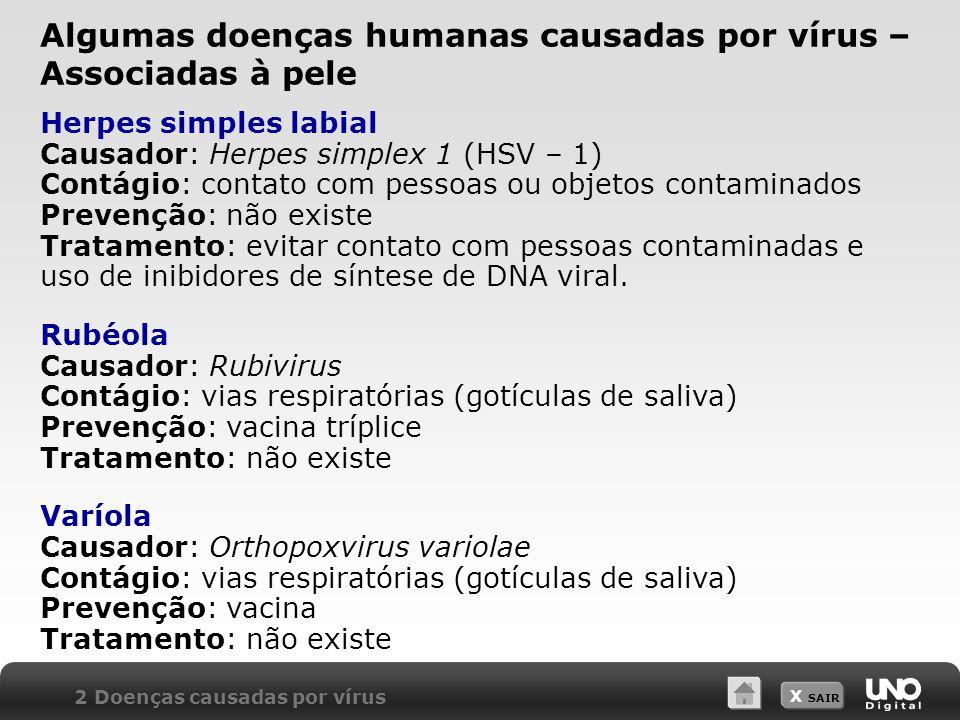 X SAIR Herpes simples labial Causador: Herpes simplex 1 (HSV – 1) Contágio: contato com pessoas ou objetos contaminados Prevenção: não existe Tratamen