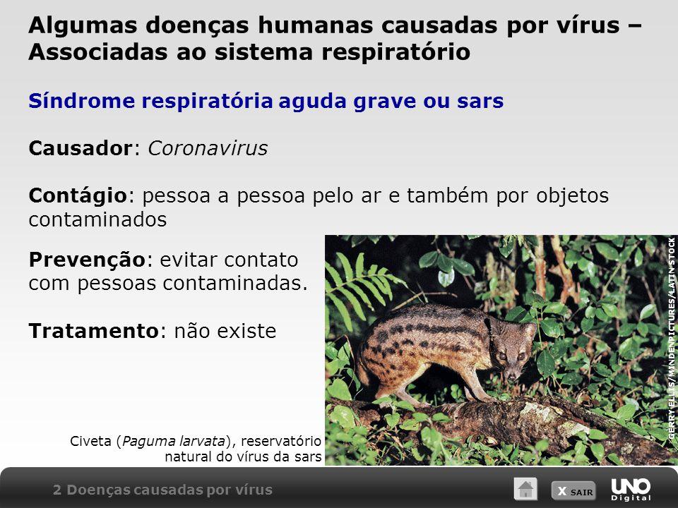 X SAIR Síndrome respiratória aguda grave ou sars Causador: Coronavirus Contágio: pessoa a pessoa pelo ar e também por objetos contaminados Civeta (Pag