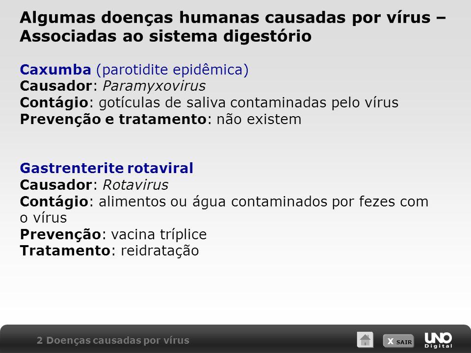 X SAIR Caxumba (parotidite epidêmica) Causador: Paramyxovirus Contágio: gotículas de saliva contaminadas pelo vírus Prevenção e tratamento: não existe