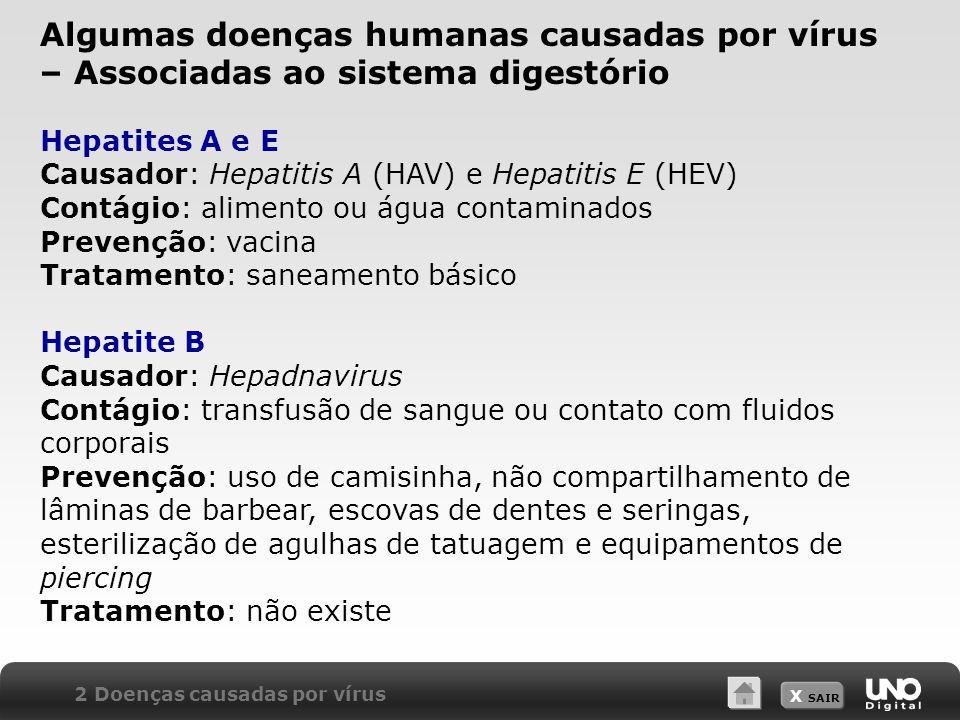 X SAIR Hepatites A e E Causador: Hepatitis A (HAV) e Hepatitis E (HEV) Contágio: alimento ou água contaminados Prevenção: vacina Tratamento: saneament