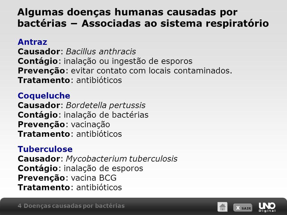 X SAIR Algumas doenças humanas causadas por bactérias − Associadas ao sistema respiratório Antraz Causador: Bacillus anthracis Contágio: inalação ou i