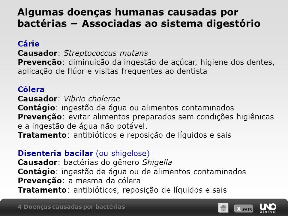 X SAIR Cárie Causador: Streptococcus mutans Prevenção: diminuição da ingestão de açúcar, higiene dos dentes, aplicação de flúor e visitas frequentes a