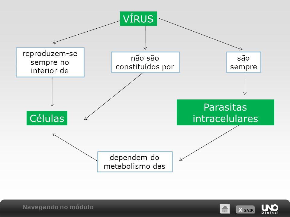 X SAIR VÍRUS reproduzem-se sempre no interior de não são constituídos por são sempre Células Parasitas intracelulares dependem do metabolismo das Nave