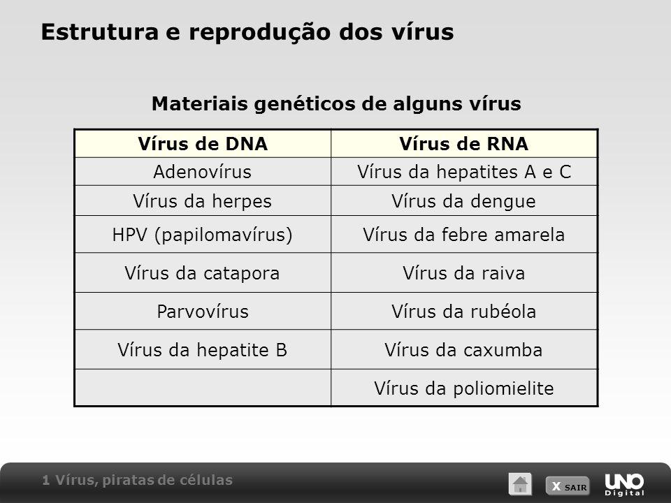 X SAIR Condiloma acuminado (crista de galo ou verruga genital) Causador: Papillomavirus (HPV) Contágio: contato sexual íntimo e durante o parto Prevenção: uso de camisinha e restrições no contato sexual íntimo Tratamento: remoção das verrugas Herpes simples genital Causador: Herpes simplex tipo 2 (HSV-2) Contágio: relação sexual Prevenção: mesma do condiloma acuminado Tratamento: uso de pomadas com inibidores da síntese de DNA viral 2 Doenças causadas por vírus Algumas doenças humanas causadas por vírus – Associadas ao sistema genital
