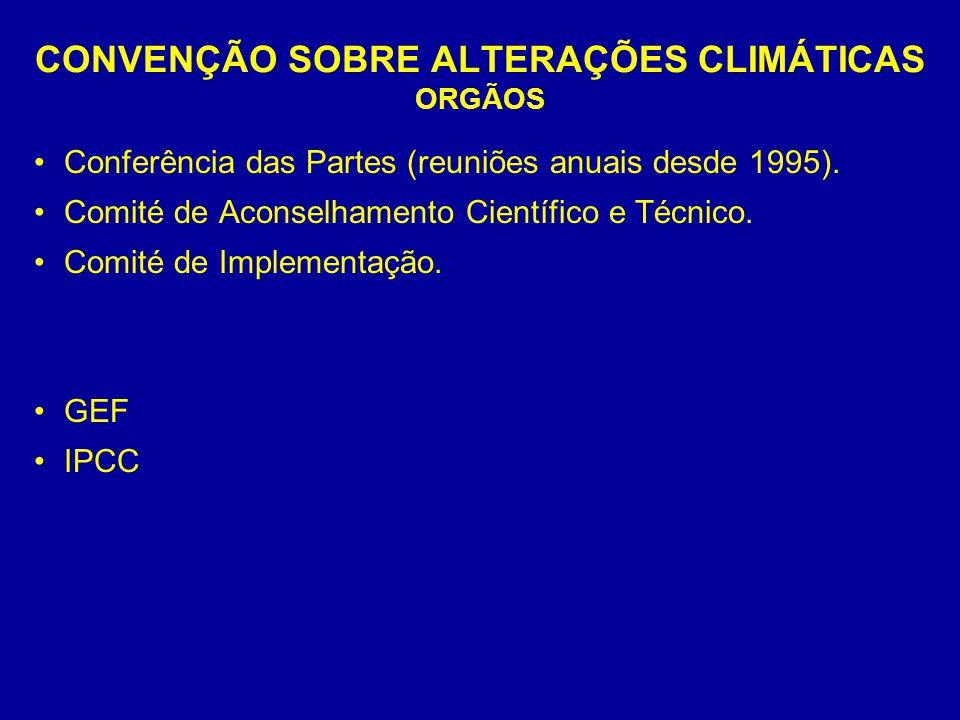 CONVENÇÃO SOBRE ALTERAÇÕES CLIMÁTICAS ORGÃOS Conferência das Partes (reuniões anuais desde 1995). Comité de Aconselhamento Científico e Técnico. Comit