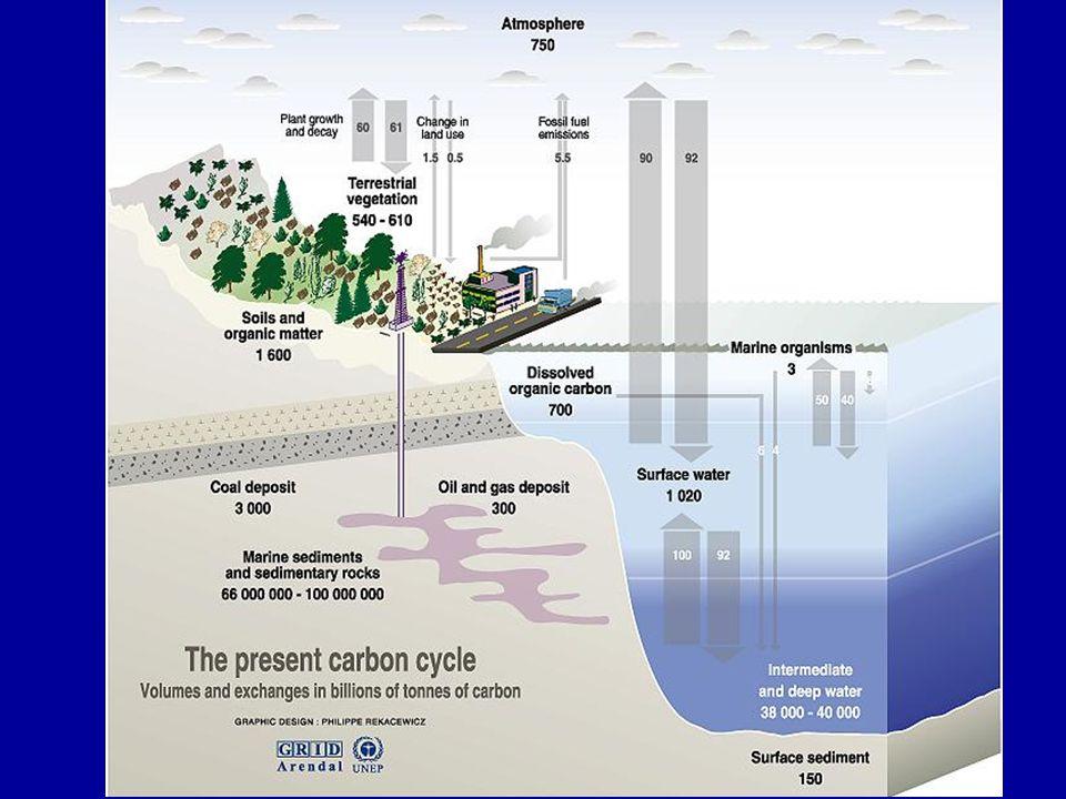 CONVENÇÃO SOBRE ALTERAÇÕES CLIMÁTICAS CONSEQUÊNCIAS ESPERADAS Aquecimento verificado: cerca de 0,6 ºC desde 1850.