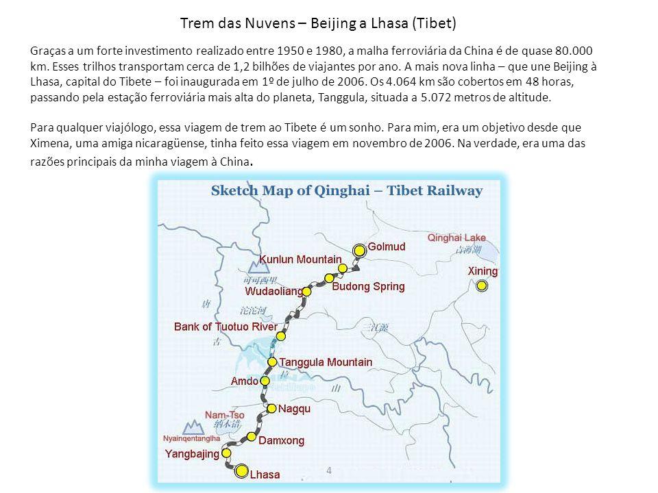 Graças a um forte investimento realizado entre 1950 e 1980, a malha ferroviária da China é de quase 80.000 km. Esses trilhos transportam cerca de 1,2