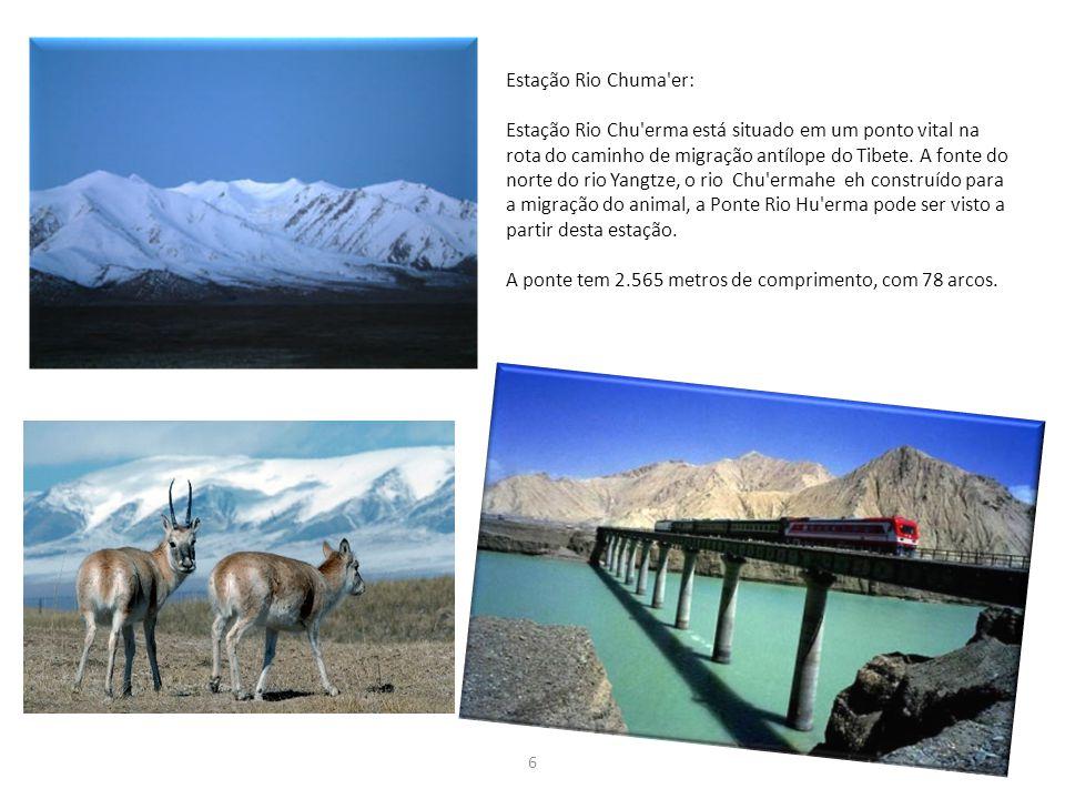 6 Estação Rio Chuma'er: Estação Rio Chu'erma está situado em um ponto vital na rota do caminho de migração antílope do Tibete. A fonte do norte do rio