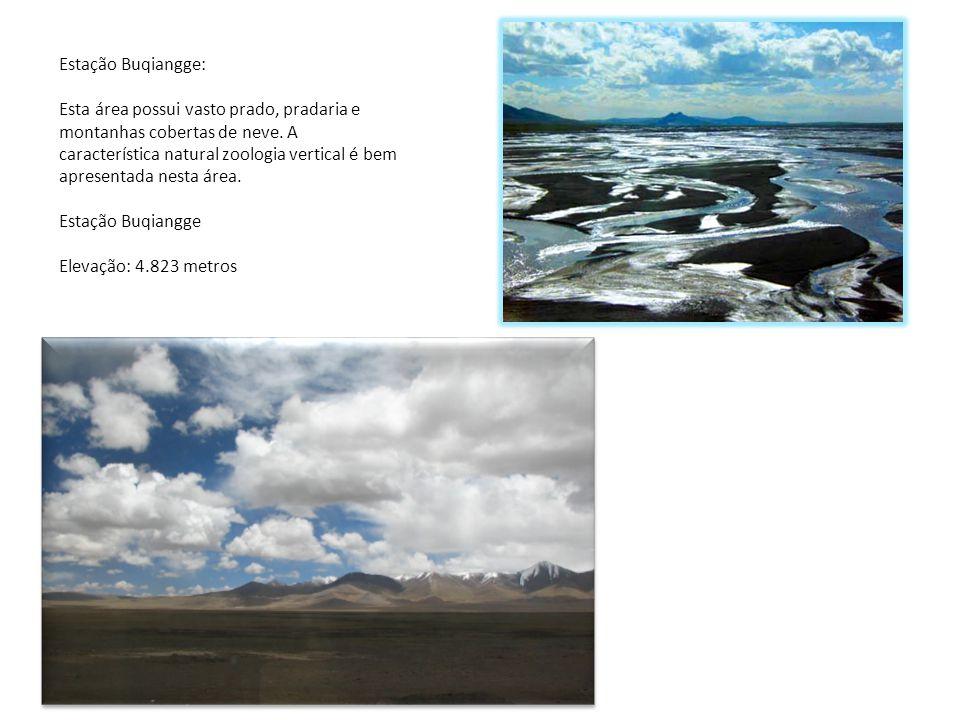 8 Estação Buqiangge: Esta área possui vasto prado, pradaria e montanhas cobertas de neve. A característica natural zoologia vertical é bem apresentada