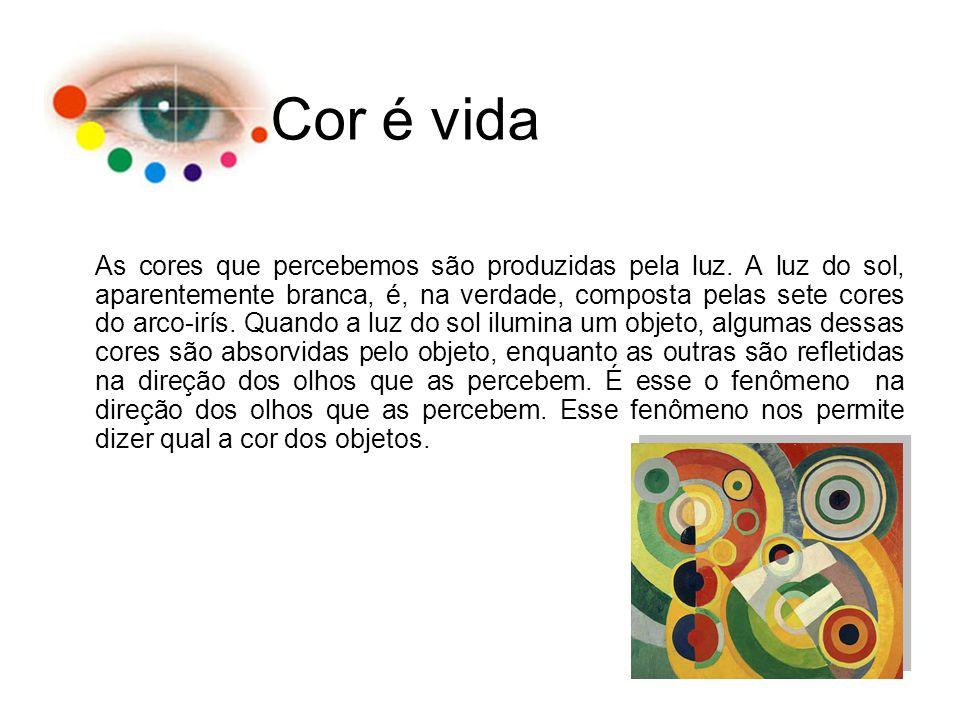 Cor é vida As cores que percebemos são produzidas pela luz. A luz do sol, aparentemente branca, é, na verdade, composta pelas sete cores do arco-irís.