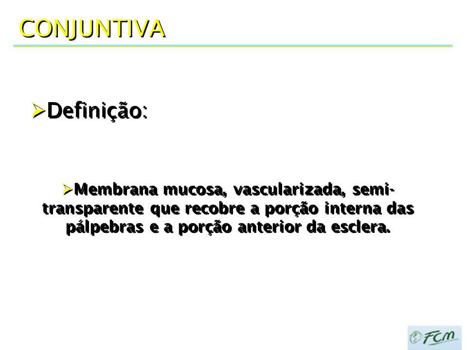 CONJUNTIVA  Definição:  Membrana mucosa, vascularizada, semi- transparente que recobre a porção interna das pálpebras e a porção anterior da esclera