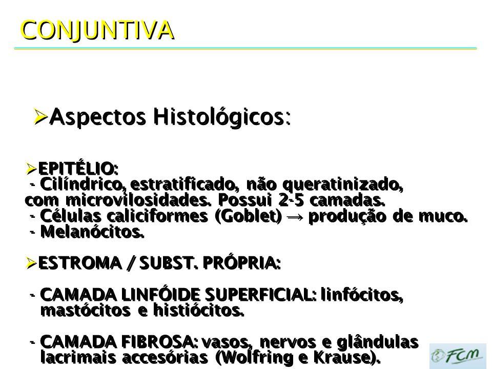DOENÇAS DA CONJUNTIVA DEGENERAÇÕES: pingúecula, pterígio, cistos (retenção, dermóides), granuloma piogênico.