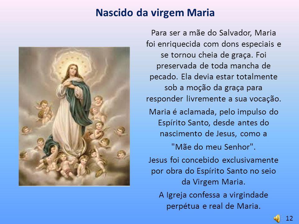 Nascido da virgem Maria Para ser a mãe do Salvador, Maria foi enriquecida com dons especiais e se tornou cheia de graça. Foi preservada de toda mancha