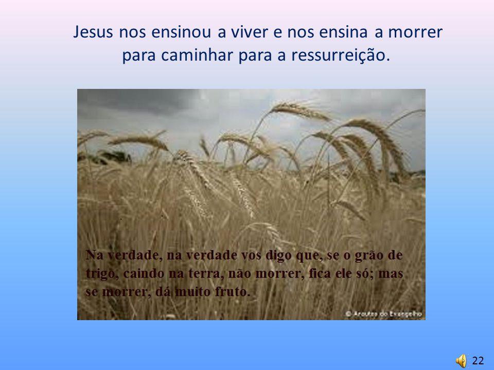 Jesus nos ensinou a viver e nos ensina a morrer para caminhar para a ressurreição. 22